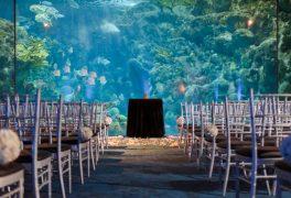 海の中にいるような幻想的な世界のなかで結婚式を。水族館ウェディング!